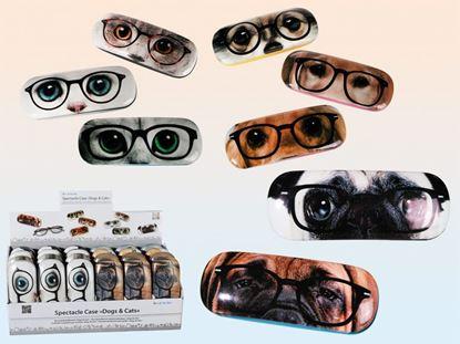 Obrázek Pouzdro na brýle s vtipným motivem