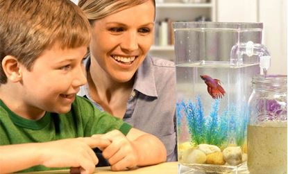Obrázek Samočistící akvárium My fun fish