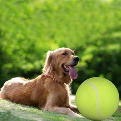 Obrázek z Maxi tenisák