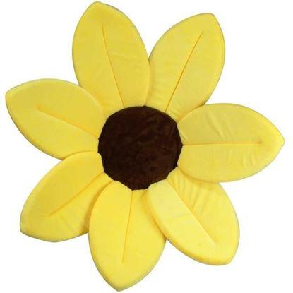 Obrázek Koupací květina