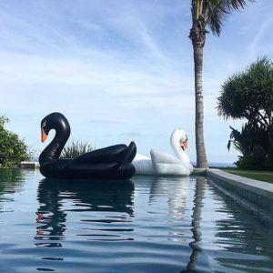Obrázek z Nafukovací lehátko Černá labuť