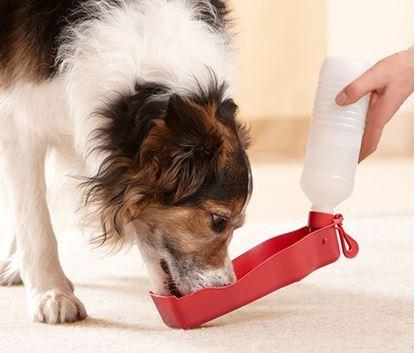 Obrázek Cestovní láhev pro psy - červená