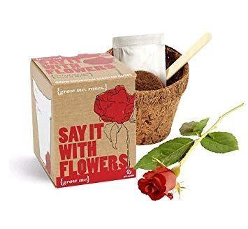 Obrázek Grow me - Řekni to růží
