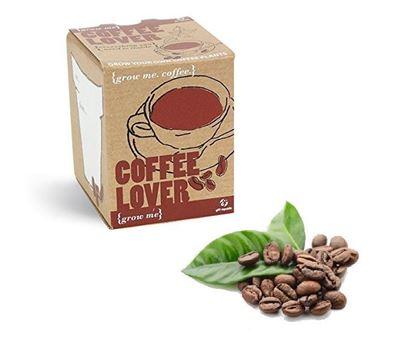 Obrázek Grow me - Vlastní káva