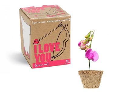 Obrázek Grow me: Miluji tě!