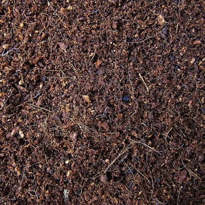 Obrázek z Zemina k pohádkové zahradě