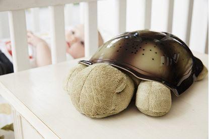 Obrázek Noční svítící želvička