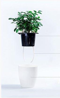Obrázek Samozavlažovací květináč - velký - 2. jakost
