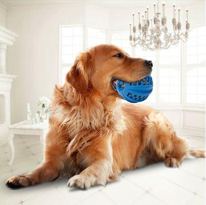 Obrázek Žvýkací míček pro psy - velký
