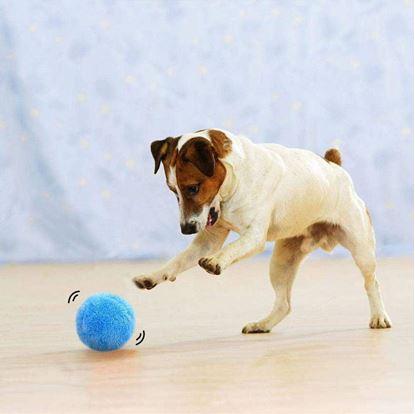 Obrázek Pohyblivý míček pro mazlíčky