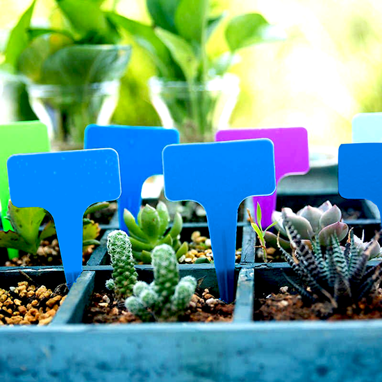 Štítky k rostlinám