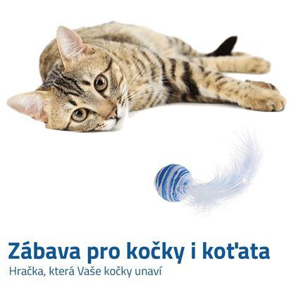 Míček pro kočky