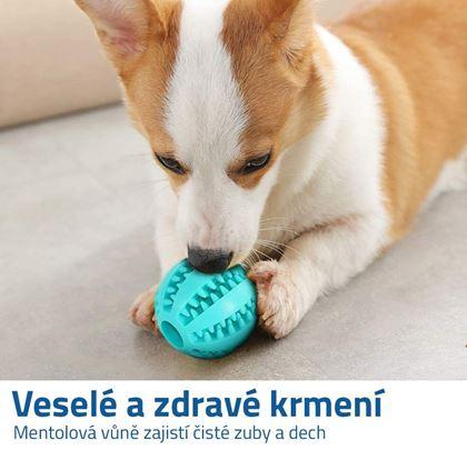 Míček pro psy