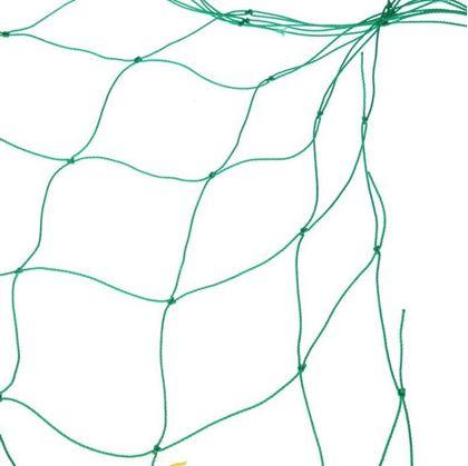 pěstování okurek na síti