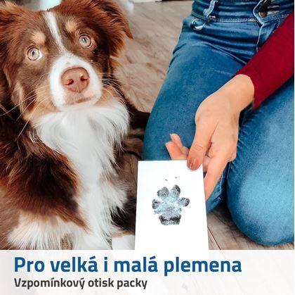 pro psy